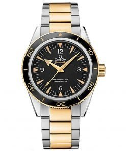 Omega Seamaster 300 Master Co-Axial Watch 233.20.41.21.01.002