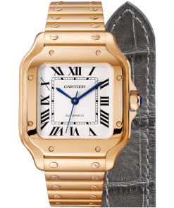 SANTOS DE CARTIER WATCH WGSA0008