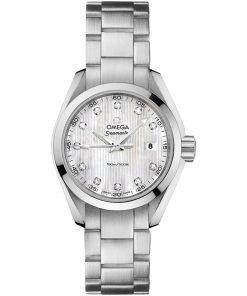 Omega Aqua Terra Quartz Watch 231.10.30.60.55.001