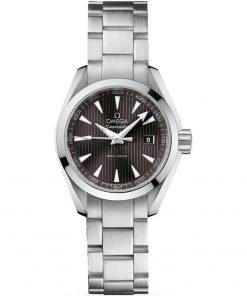 Omega Aqua Terra Quartz Watch 231.10.30.60.06.001