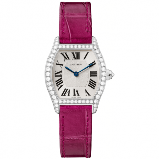 TORTUE WATCH WA501007